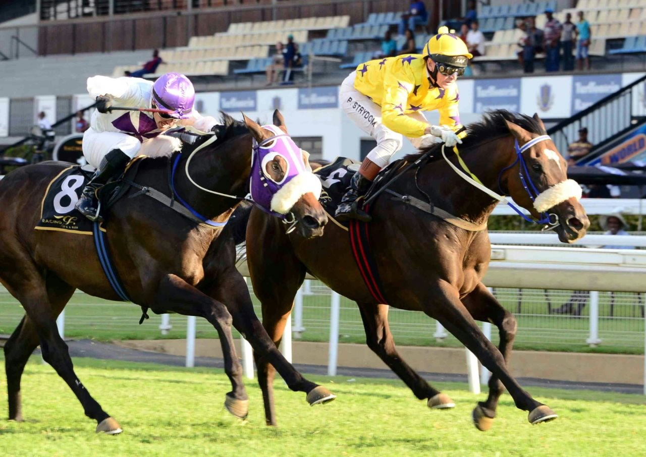 Lauren of Rochelle winning at Turffontein racecourse - Horse Racing - Owned by the Hollywood Syndicate