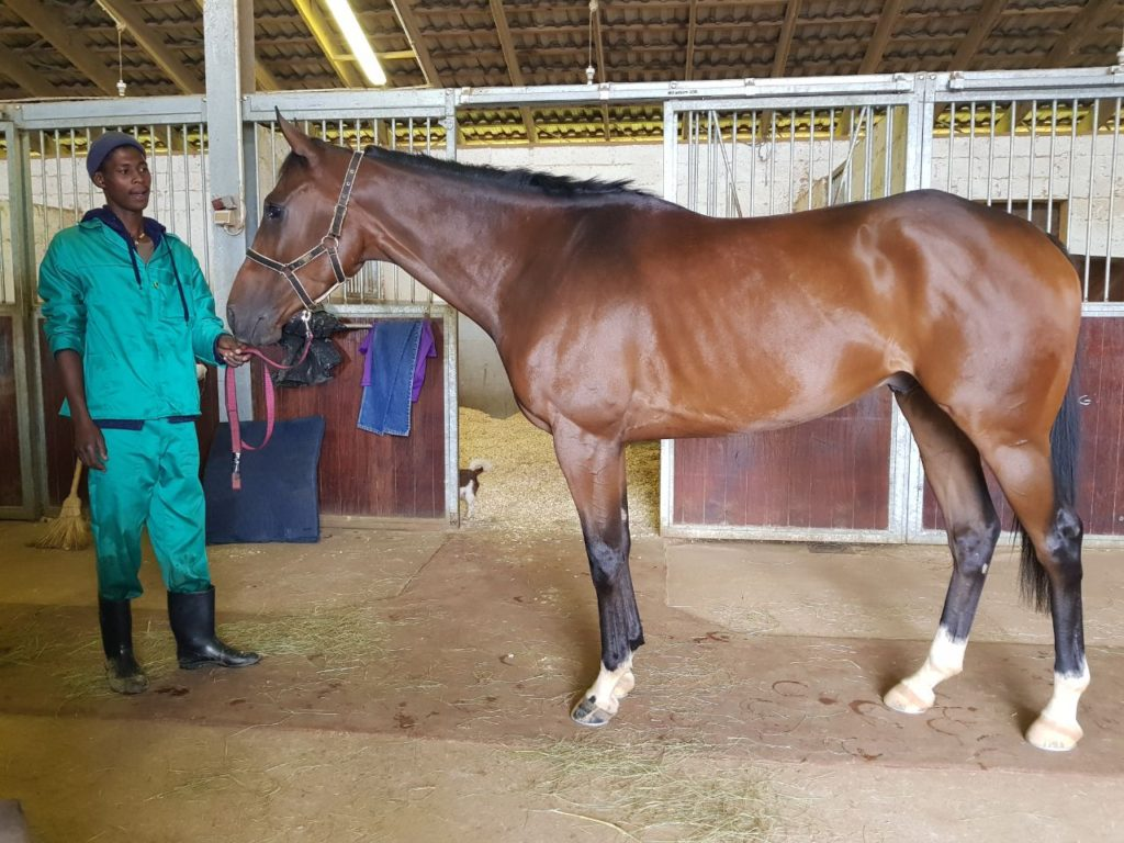 "Sunny Bill Du-Toy with his groom Sandile ""Henry"" Mkhize at Summerveld"