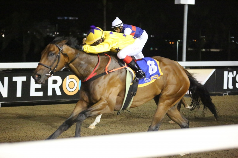 Sky Vegas winning for the Hollywood Syndicate at Greyville Polytrack. Horse Racing - Trainer Comments