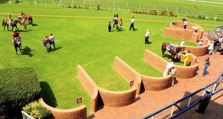 Vaal Racecourse - Parade Ring