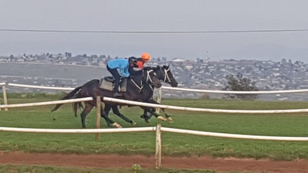 Agent Murphy cantering on the track with Painted Black