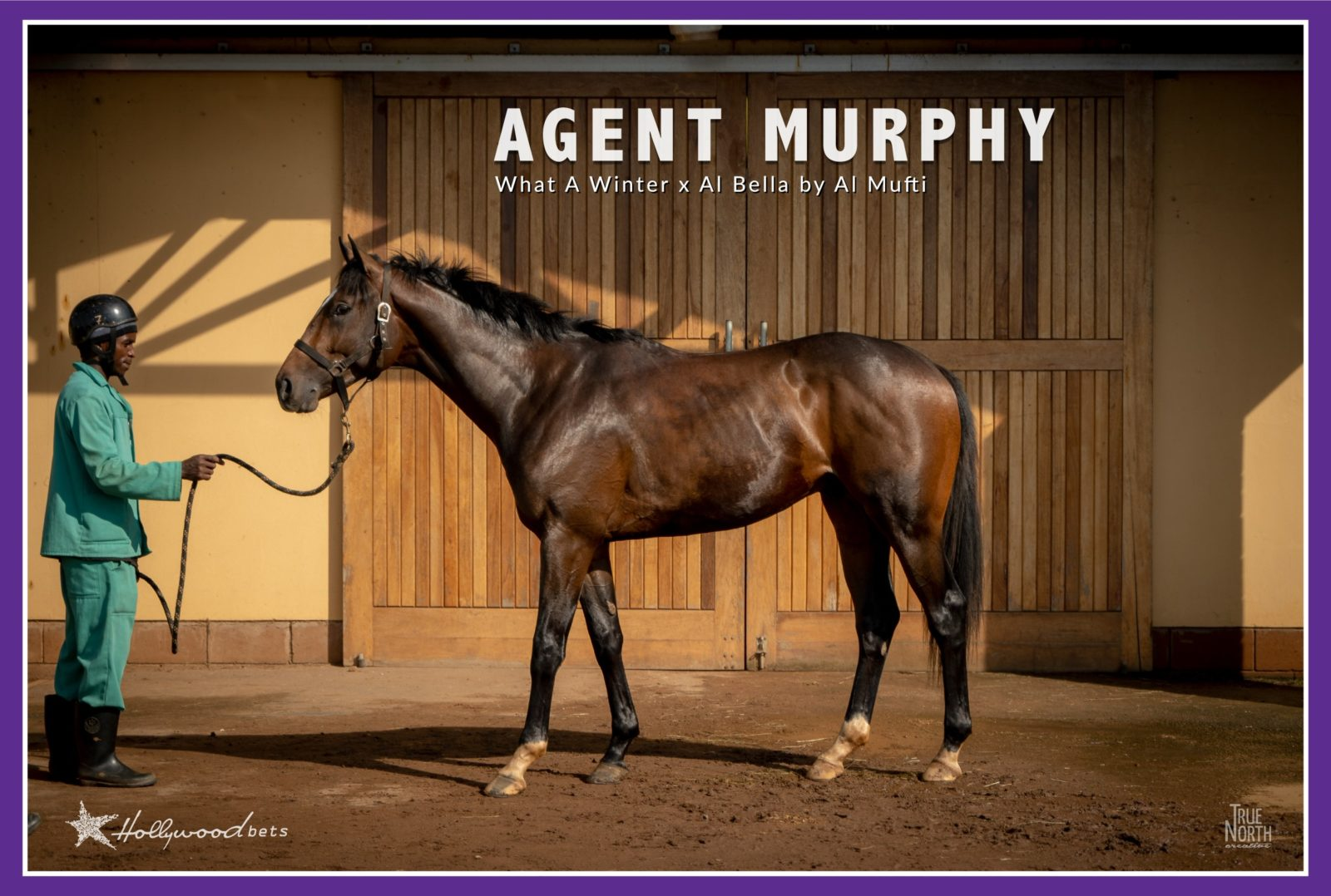 Agent Murphy - Colt by What A Winter