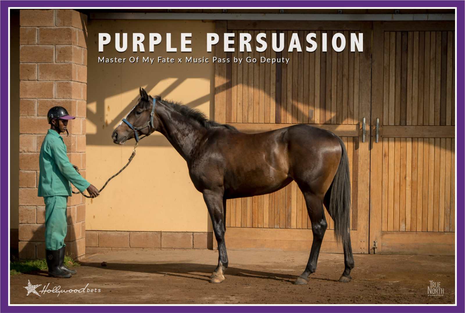 Purple Persuasion. Bay filly. Sire: Master of My Fate. Dam: Music Pass (Go Deputy). Horse owned by the Hollywood Syndicate.