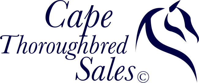 Cape Thoroughbred Sales Logo