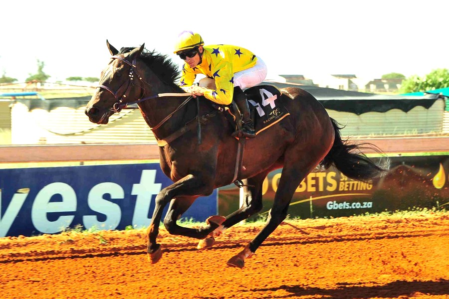 Honest Prince wins in the 6th race at Flamingo Park in Kimberley on 25th March 2019.