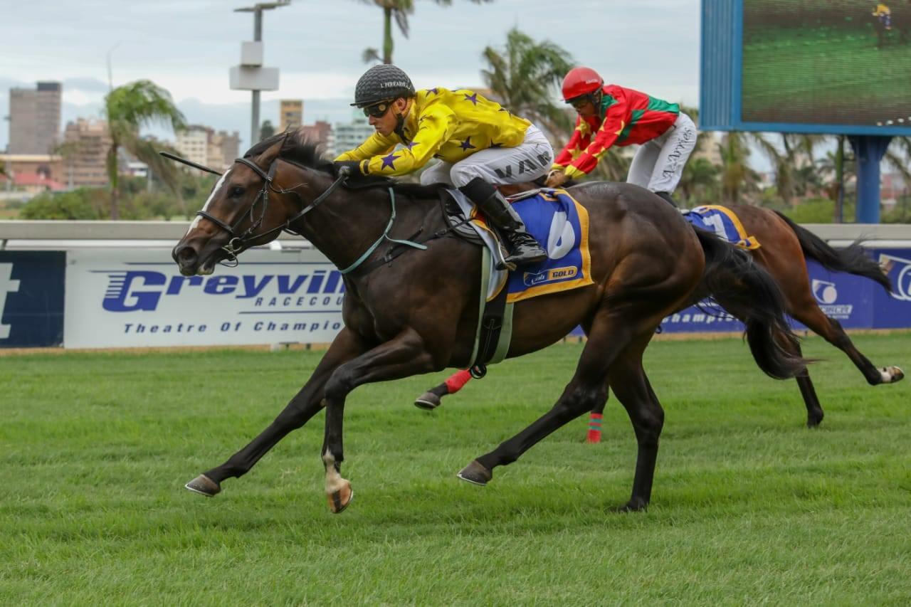 Purple Persuasion winning at Greyville on Sunday 2nd March 2019 - Ridden by Lyle Hewitson - Horse Racing