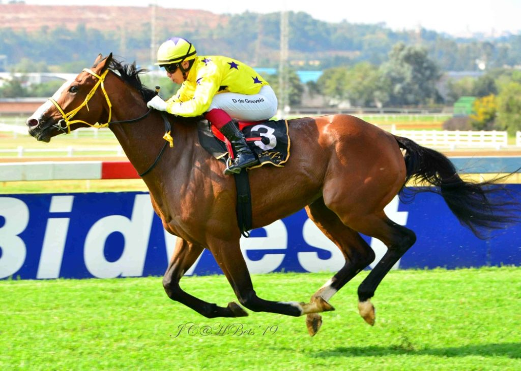 Seattle Force winning the 4th race for the Hollywood Syndicate at Turffontein on 2nd April 2019. Horse Racing