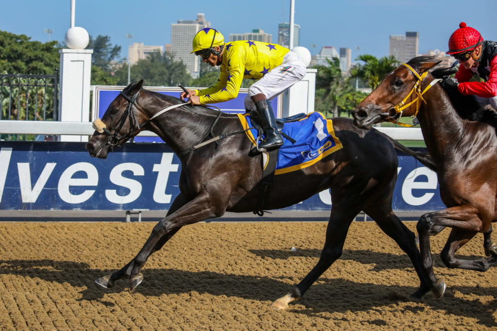 Mocha Rose wins at Hollywoodbets Greyville on the 20th March 2019. Horse racing.