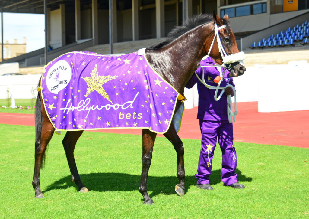 Hollywood Thunder with Hollywoodbets Blanket