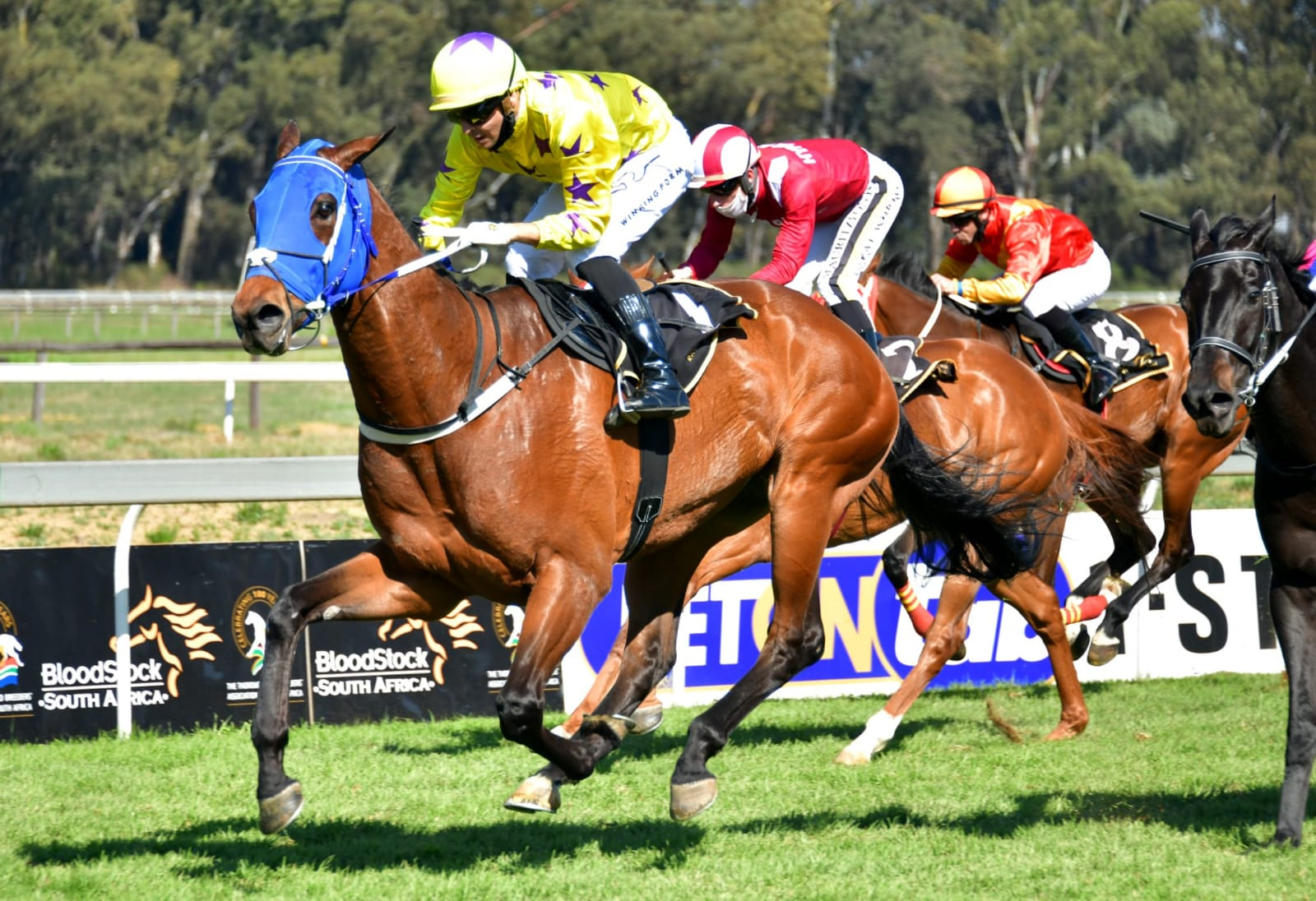 """Horse """"Lion of the Desert"""" winning at the Vaal"""