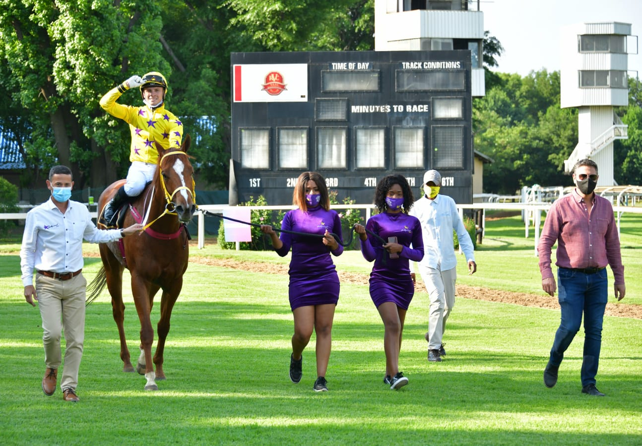 The horse Grappler being led in at the Vaal